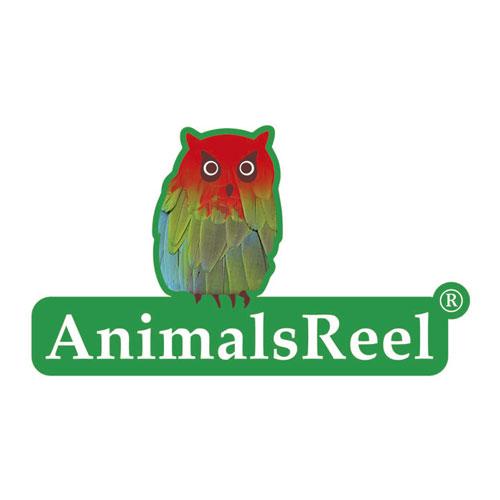 Animalsreel-logo.jpg